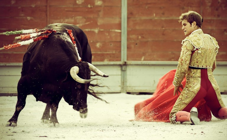 Противоборства с быками