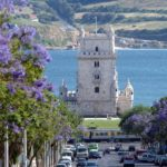 Прогулка по винным маршрутам Португалии