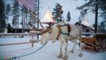 В Турине откроют деревню Санта-Клауса