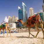 Приключенческий тур в Дубай