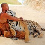 Достопримечательности Таиланда — Тигриный монастырь