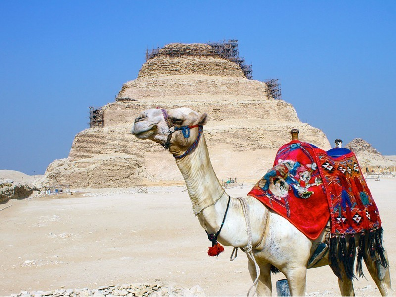 Египет в мае