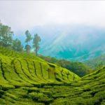 Керала — жемчужина Индии