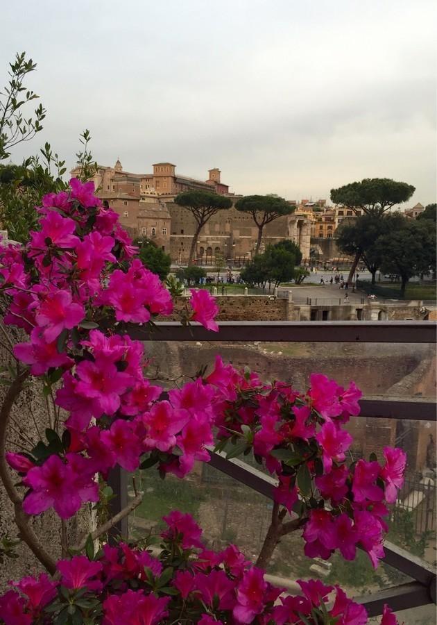Рим - Week End