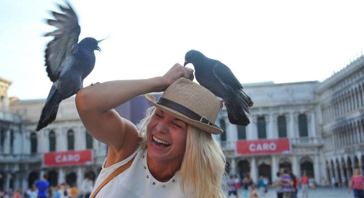В Италии туристам грозит штраф