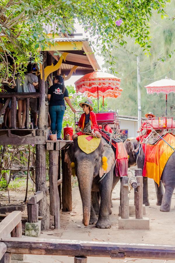 Сафари на слонах Таиланд