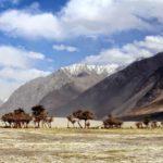 Ладакх — страна перевалов